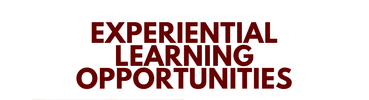 Experiential Learning Opportunities